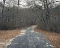 Unnamed road, Bohemia, New York, 2010 thumbnail