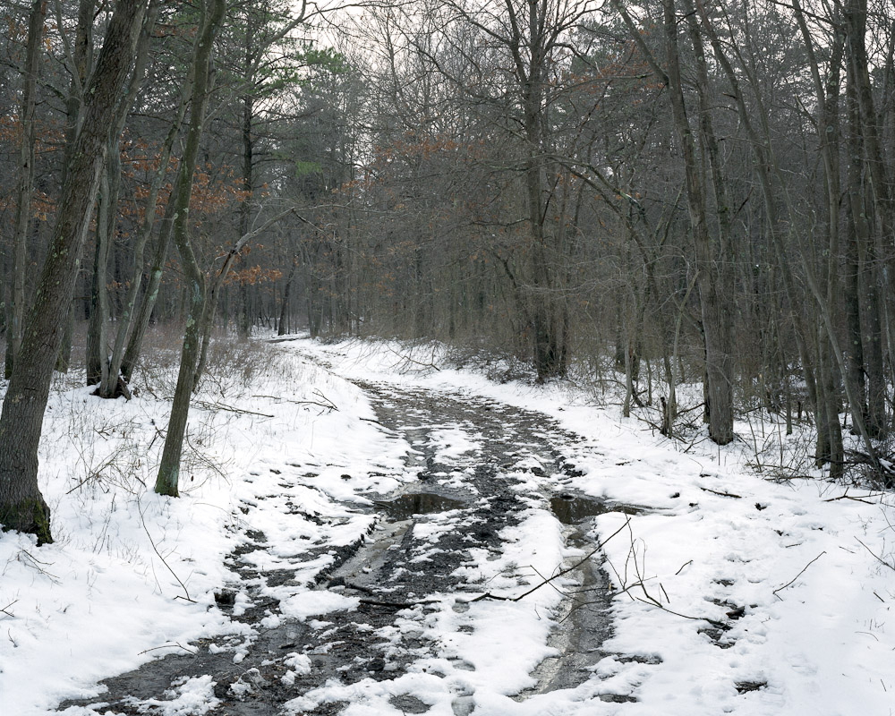 Bridle path, Bohemia, New York, 2010